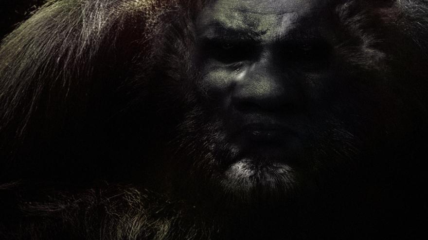 Bigfoot-11