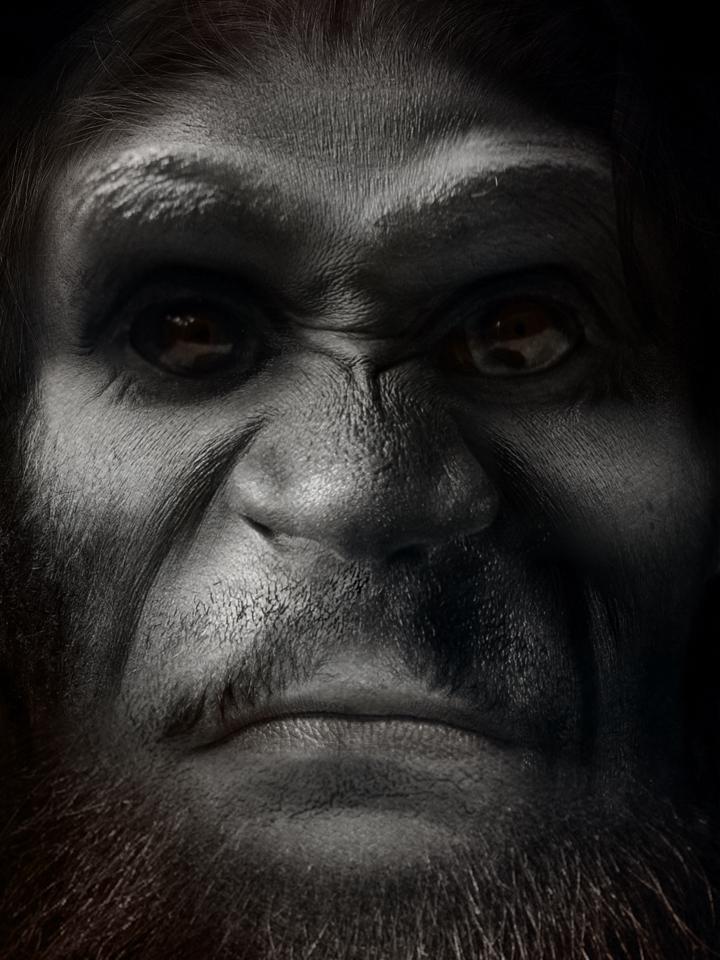 Bigfoot-17.jpg
