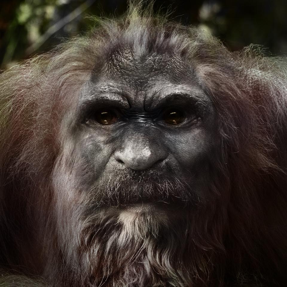 Bigfoot-18.jpg