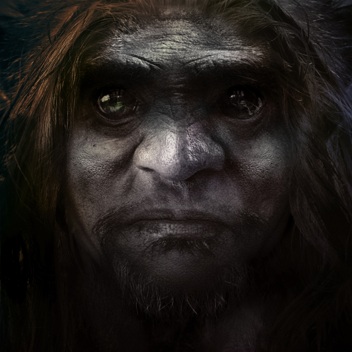 bigfoot-face-14.jpg