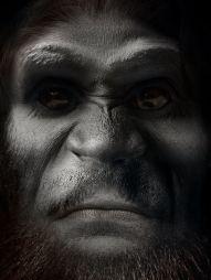 Bigfoot Face | SasquatchxSatanfudge