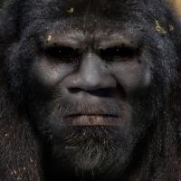Bigfoot Face 18