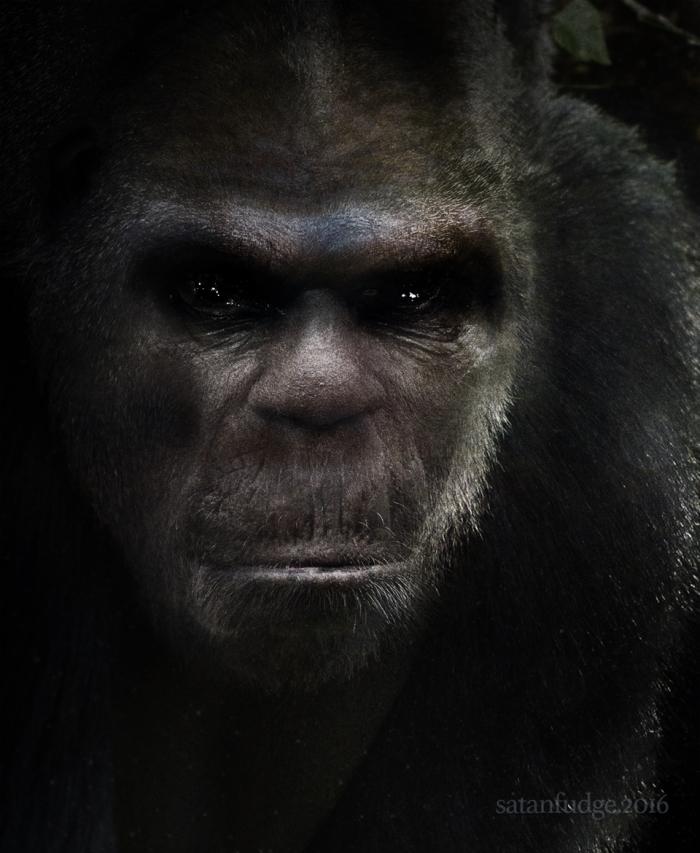 bigfoot-face-3