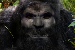Sasquatch has human mitochondrial DNA but possesses nuclear DNA that is a structural mosaic consisting of human and novel non-human DNA.