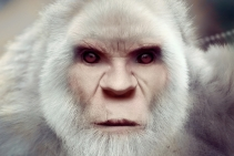 White Bigfoot Face