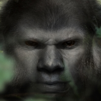 Bigfoot Face 23