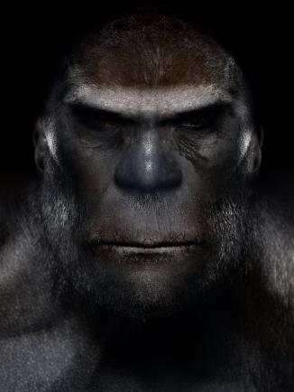 Bigfoot-Face-28.jpg