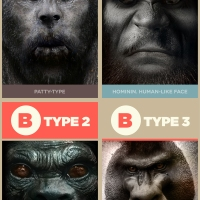 4 types of Bigfoot