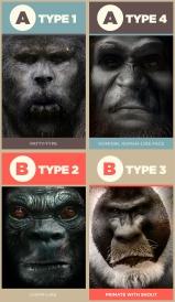 Bigfoot-Types-v1.3