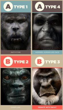 Bigfoot-Types-v1.3