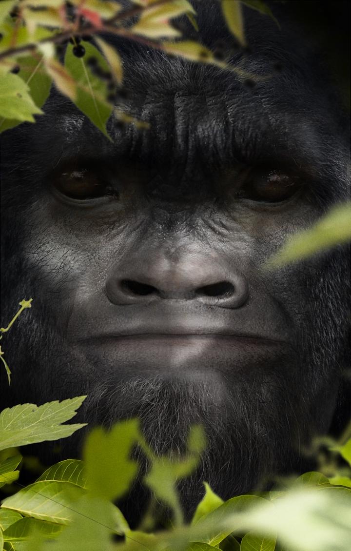 bigfoot-face-37-matt-07.0c