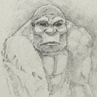 Bigfoot Face Sketch