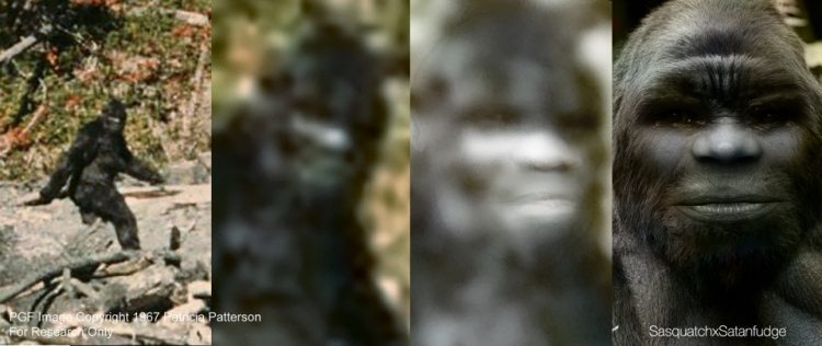 Patty Rendering. - Frame from the Patterson-Gimlin Film Integrity Analysis - Zoom in for a closer look - Lighten the image and sketch out the features - Final rendering
