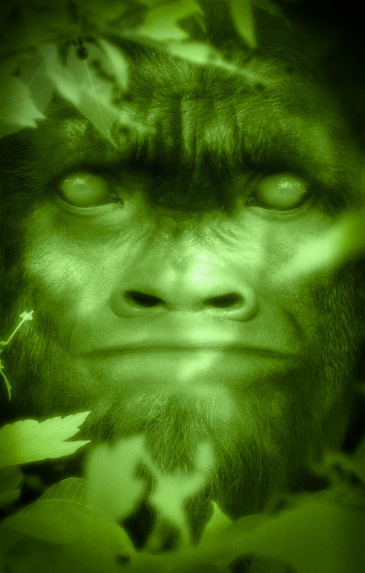 bigfoot-face-37-matt-07.0d