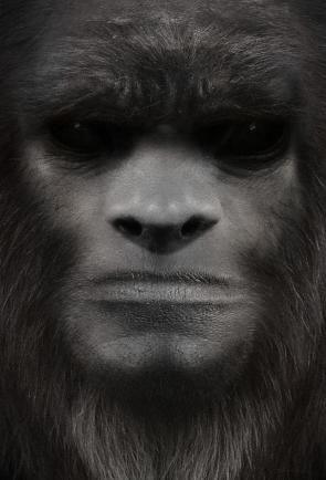 bigfoot-face-39