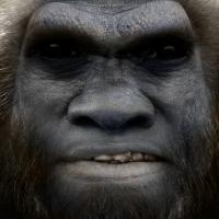 bigfoot-face-38