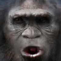 bigfoot-face-40