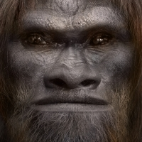 Bigfoot Face 42