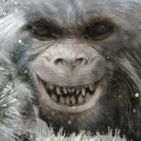 Bigfoot Face 52