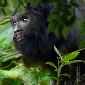 Bigfoot Face 51