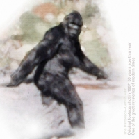 The Patterson-Gimlin Film. 50 Years.