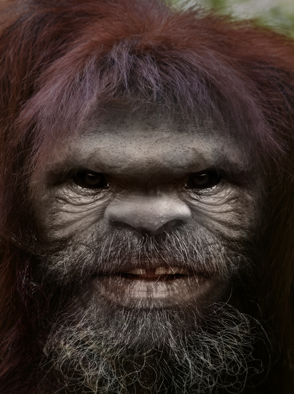 Bigfoot-Face-57