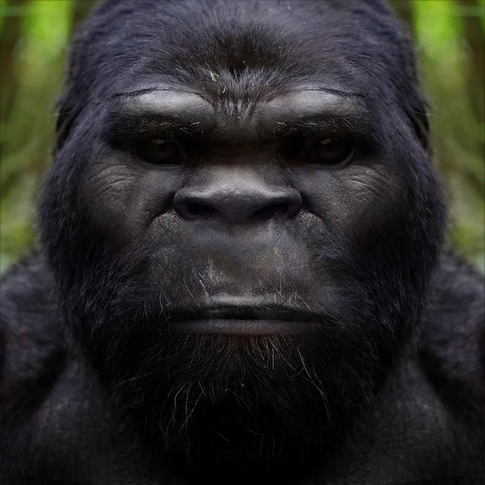 Bigfoot-Face-59