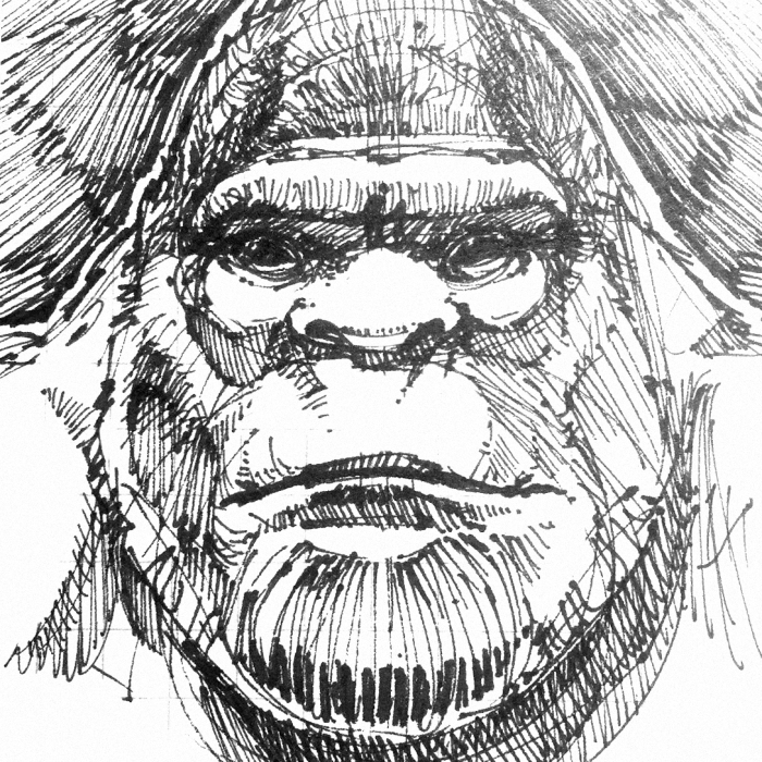 bigfoot-face-sketch