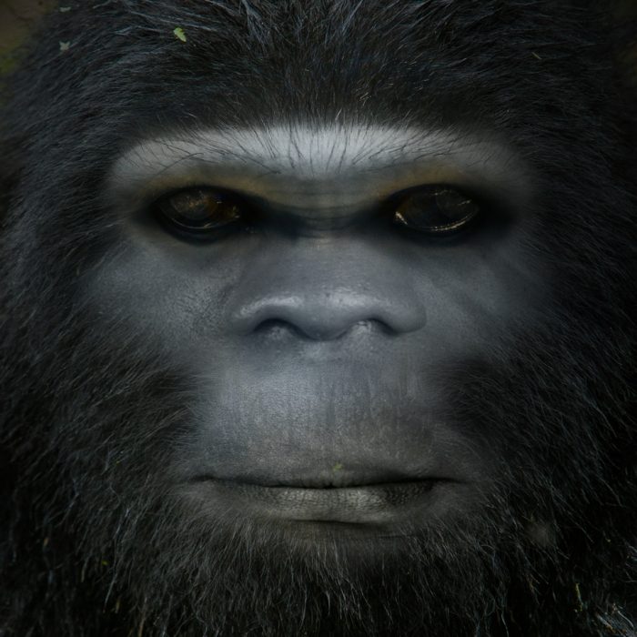 Bigfoot-Face-69