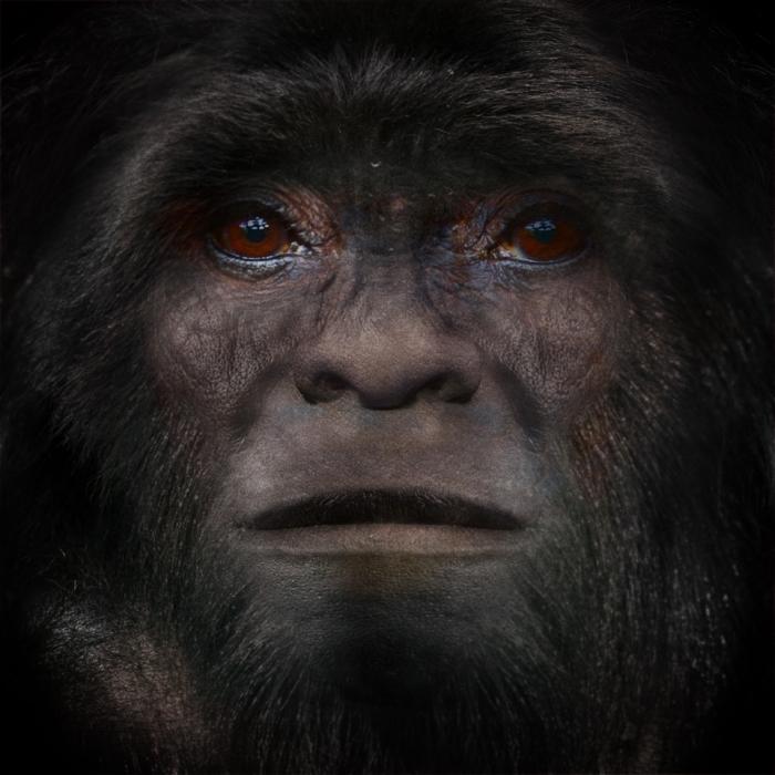Bigfoot face. Sasquatch by Satanfudge.