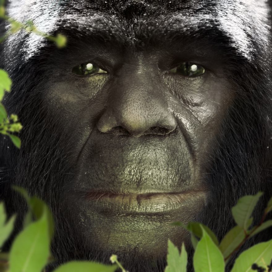 Bigfoot-Face-74