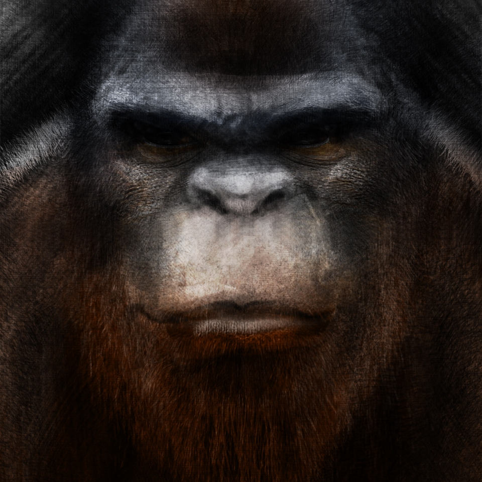 bigfoot-sketch-color-5