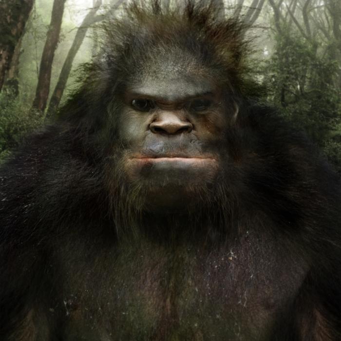 Bigfoot-Face-80