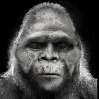 Bigfoot-Face-82b