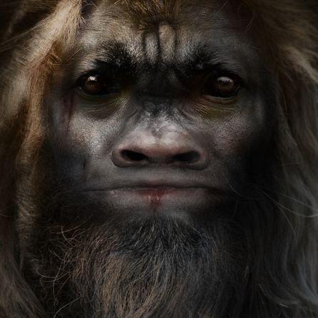 Bigfoot-Face-84