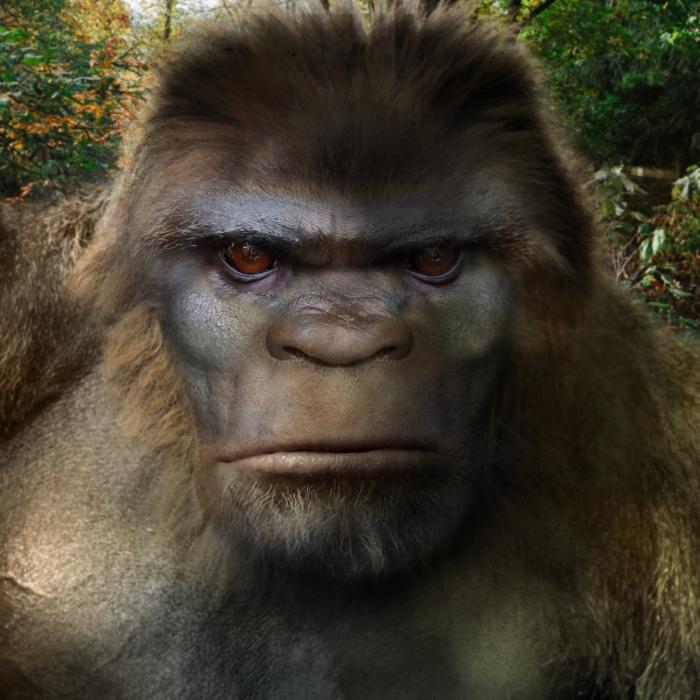 Bigfoot-Face-85b.jpg