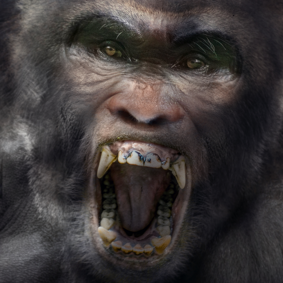 Bigfoot-Face-86.jpg