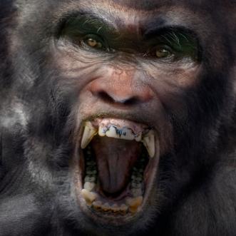 Bigfoot-Face-86